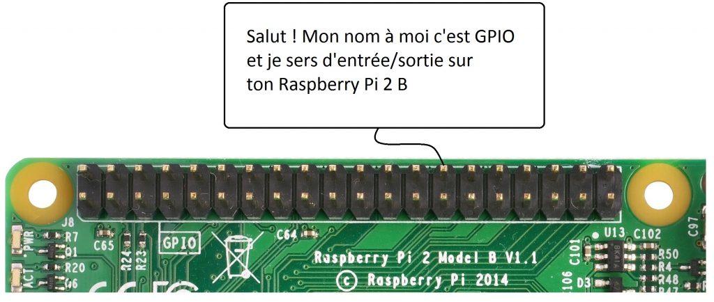 Raspberry GPIO